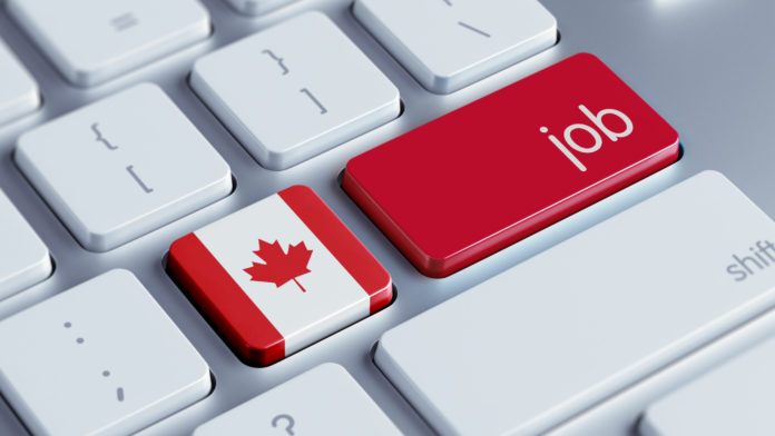 Canada Adds Further 246,000 Jobs in August, Labour Force Survey Shows