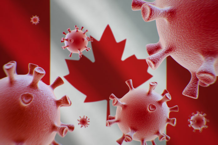 COVID-19: More Time To Restore Status For Visitors, Study and Work Permit Holders in Canada